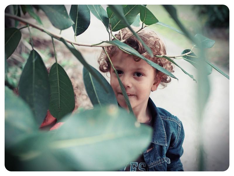 fonsecafoto-kids-05205656.jpg