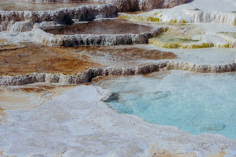 Mammoth-Hot-Springs-Yellowstone-Mroczek-2843.jpg