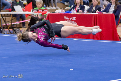 HS Sports - Gymnastics State Individual [d] March 02, 2019