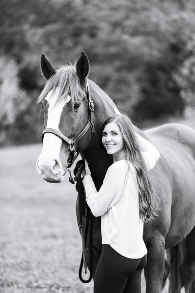 Cara and Bongo- Equine