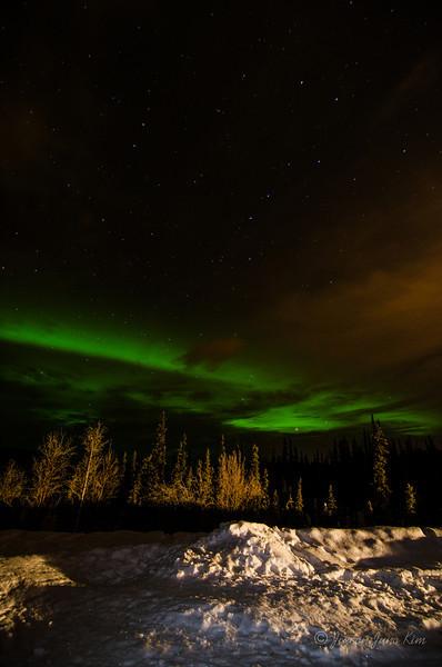 USA-Alaska-Fairbanks-2367.jpg