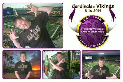 Cardinals at Vikings 8-16