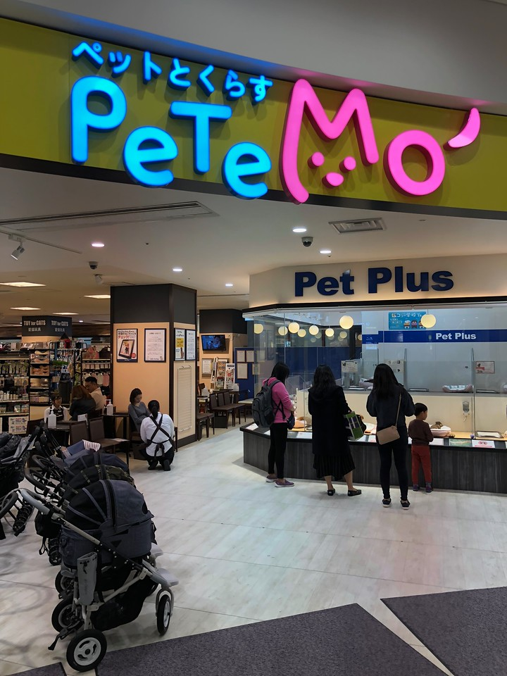 Odaiba Pet Shop