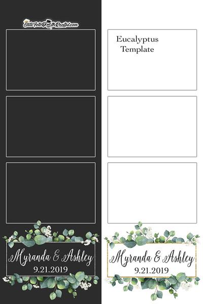 Eucalyptus template.jpg