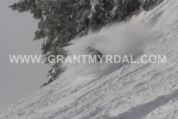 Daily galleries 2015/16 ski season