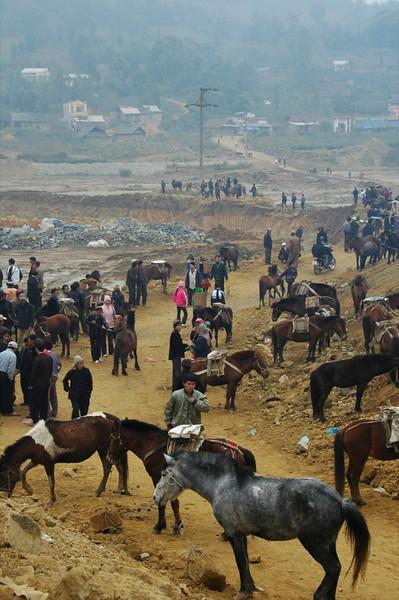 Horse Trading - Bac Ha, Vietnam