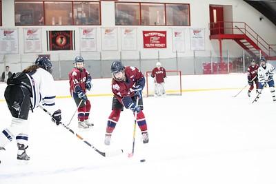 1/9/19: Girls' Thirds Hockey v Millbrook