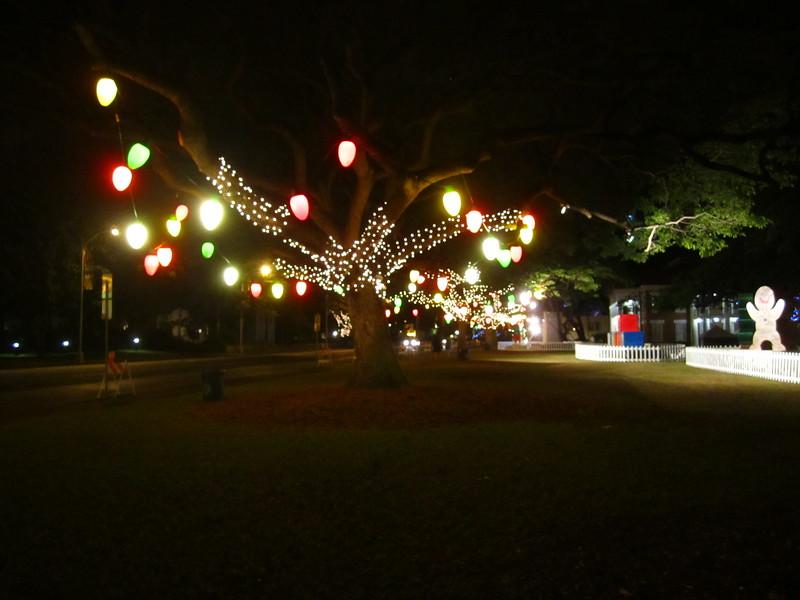 Hawaii - Honolulu City Lights-9.JPG
