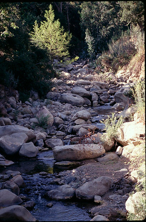 Santa Barbara, CA 1998
