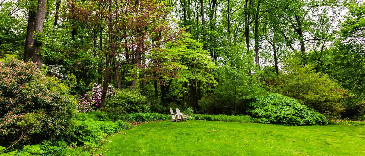 滨州詹金斯植物园(Jenkins Arboretum),一步一景