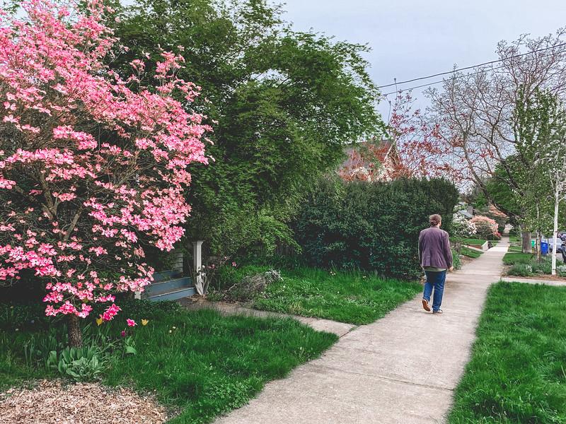 2019-04-25 Portland-45.jpg