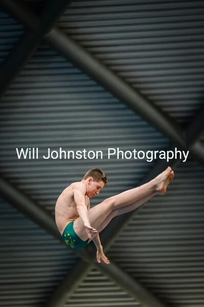 Swim England NAGS Diving 290619