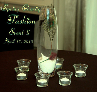 Spring Charity Fashion Event II 4/17/2010