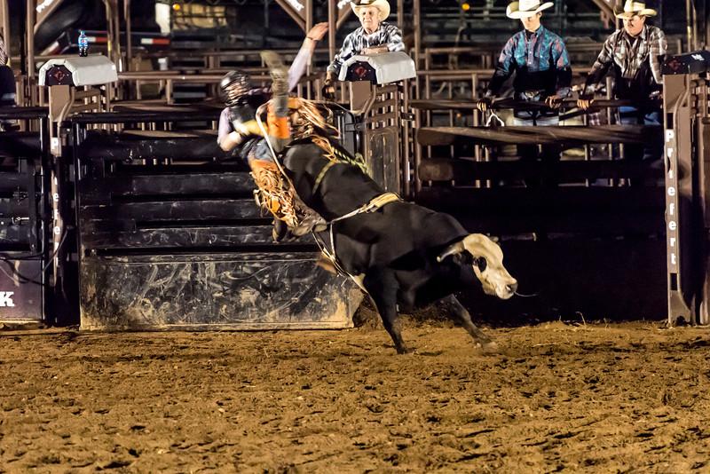 big-cedar-rodeo-262.jpg