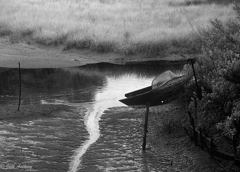 swamped boat print image.jpg
