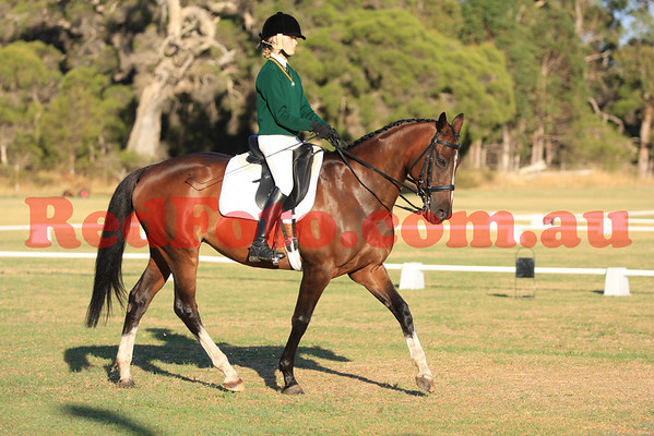 2014 02 16 Orange Grove Multi Discipline Day Dressage