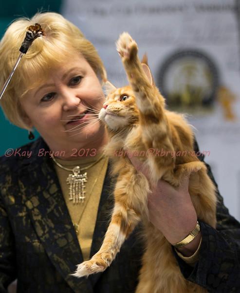 CatShow2014096.JPG