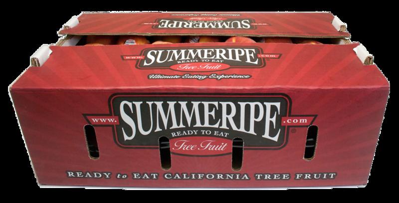 2L Summeripe 01.png