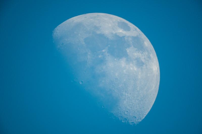 2-3-20 day moon-2.jpg
