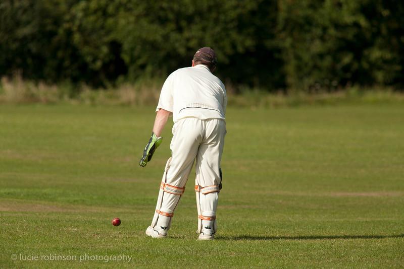 110820 - cricket - 383.jpg