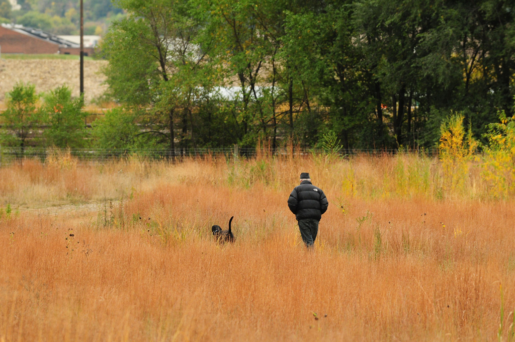. A man and his dog go for a walk  in St. Paul\'s Bruce Vento Nature Sanctuary, just east of downtown St. Paul. (Pioneer Press: Scott Takushi)