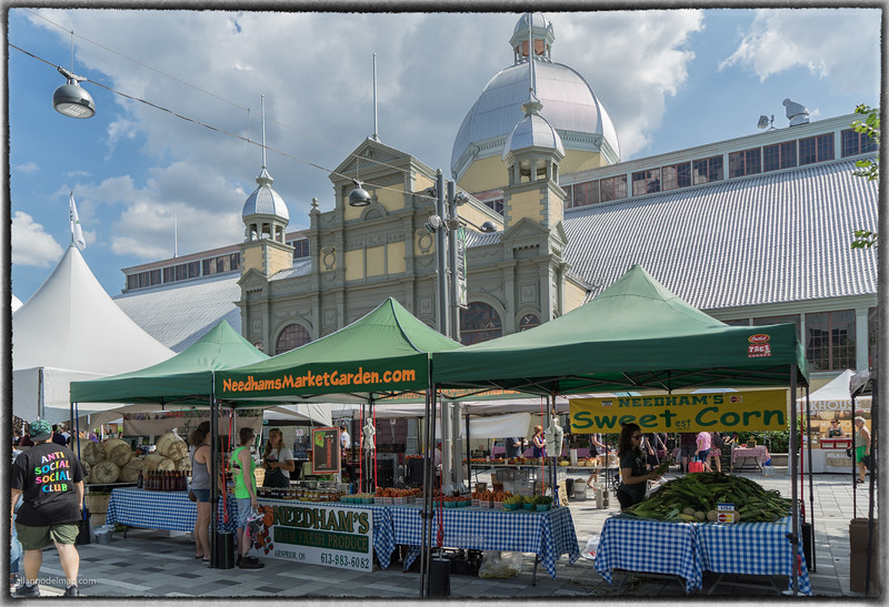 Lansdowne Farmer's Market