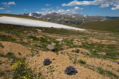 Beartooth Mountains, MT 8/9/08