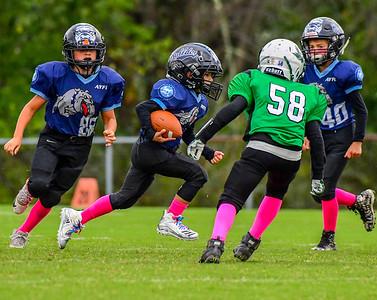Youth Football: AYFL C_Bulldogs vs LLBFL_C_Ducks 10.13.2018 (by Al Shipman)