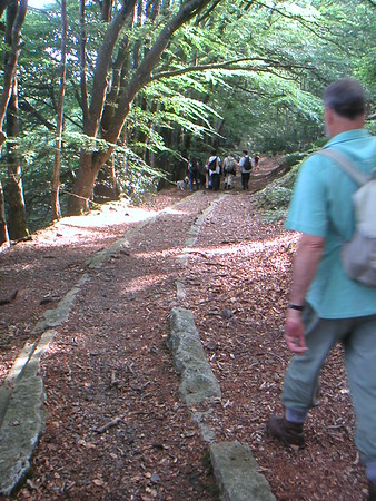 Templar Way Walk