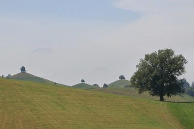 Hirzel - Ägerisee - Morgarten - Türlersee - 06/2018