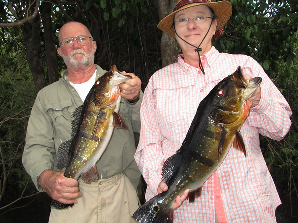 Peacock Bass Fishing Trip on the Amazon 2012