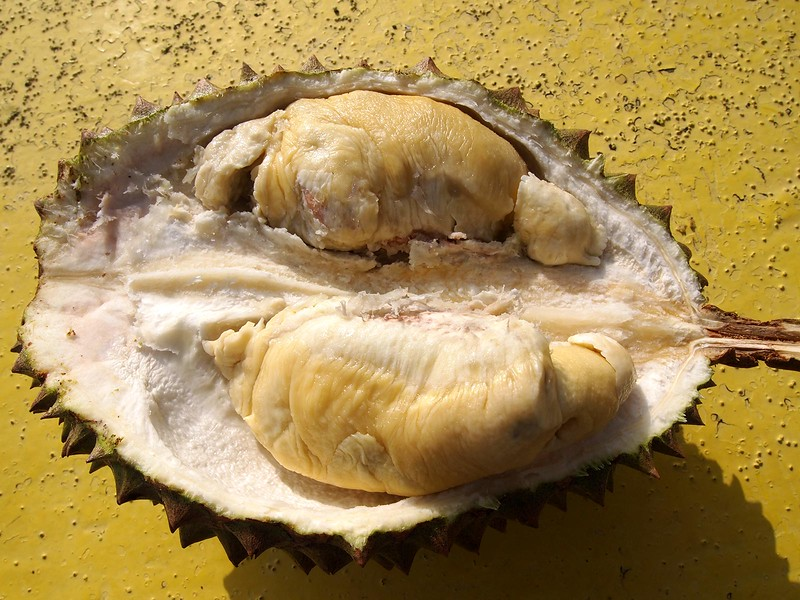 Chanee-Durian-Oahu.jpg