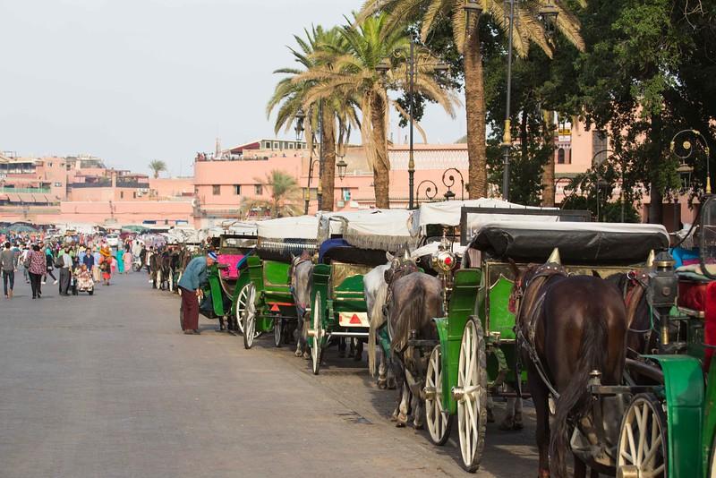 160926-113343-Morocco-0787.jpg