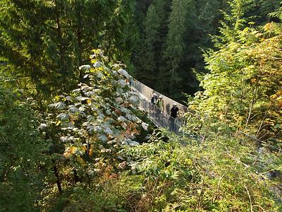 16 September : Capilano Suspension Bridge, North Vancouver, BC