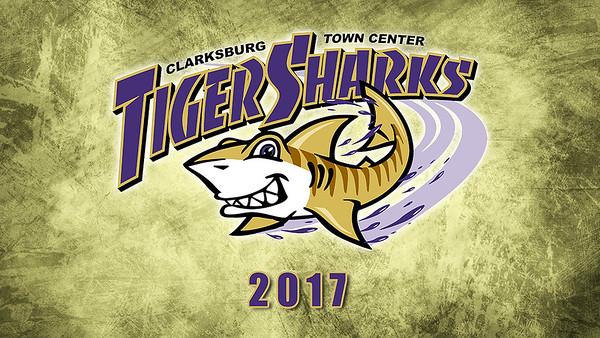 Tiger Sharks Slideshow 2017