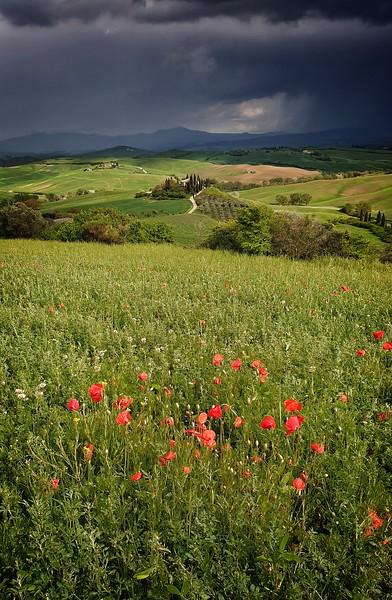 San Quirico d' Orcia, Italy