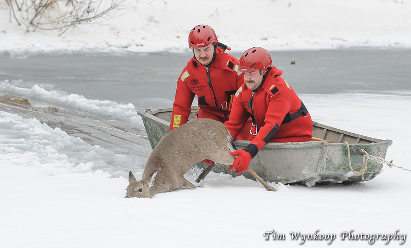 Harmony Township firefighters, Kyle McKenna, front of boat and John Latourette, reach for the doe from the boat.