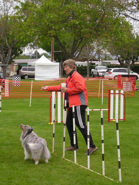 Kathie Leggett teaching weave poles in dog agility