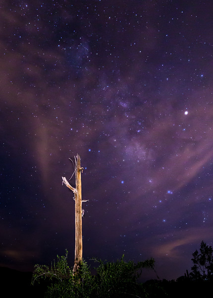 Stars 8-17-2017a.jpg