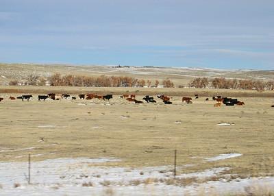 11/4/11 Stratton CO to Pueblo West CO