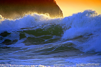 Bodega bay 2008