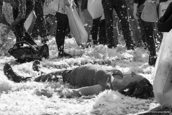 Pillow Fight in Amsterdam [2014]