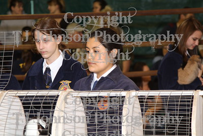 2012 KISD Breeding Rabbit Show