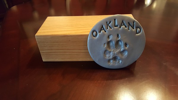Oakland 2017 (16 years old) passed away
