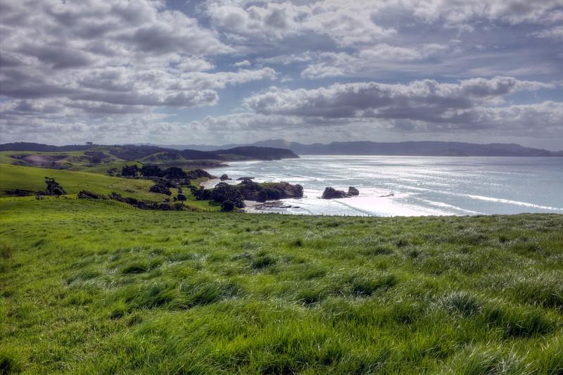 Tawharanui, looking down towards Anchor Bay.