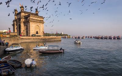 India Trip (2014-15)
