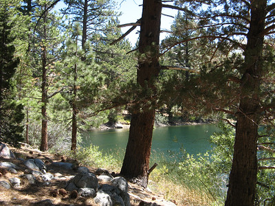 Humboldt-Toiyabe National Forest 2007