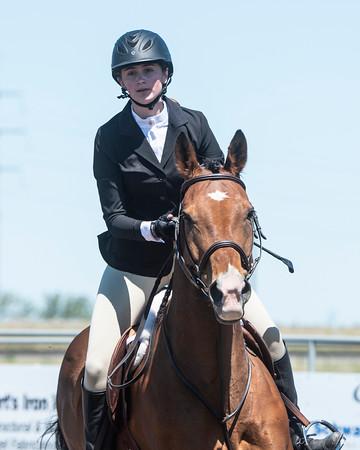 DES 2019 Horseshow #'s 116 to 122