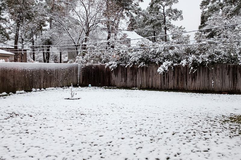 blizzard 2017-4125.jpg