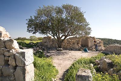 Park Britania, Emek Haela, Israel - 15-03-08